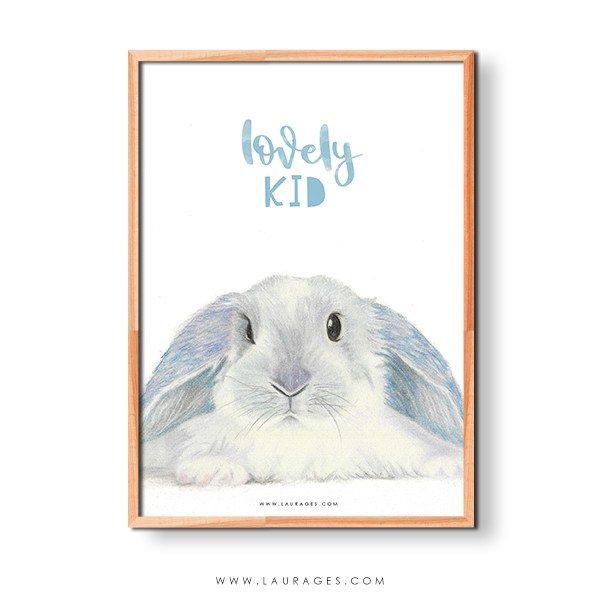 lamina-conejo